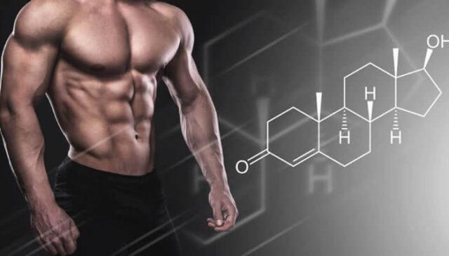 「ホルモン分泌アップ」による増大アプローチ
